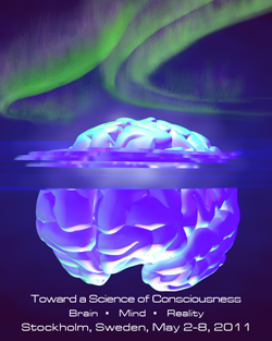 brainberg-final