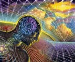 Holographic consciousness in a Holographic Universe.